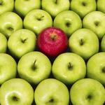 BBJ names Birmingham's Healthiest Employers for 2015