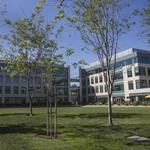 Latest buy in Symantec shopping spree hints at CEO's strategy