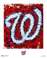 Florida artist reimagines 30 Major <strong>League</strong> Baseball logos