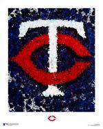 Artist reimagines Twins logo