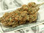 How to invest in the cannabis industry