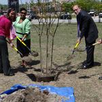Triad law school marks Earth Day with announcement of dual-degree environmental law program