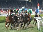 New York Racing Association expands reach in time for Breeders' Cup