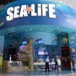 Gov. Rick Scott: Florida sets another tourism record