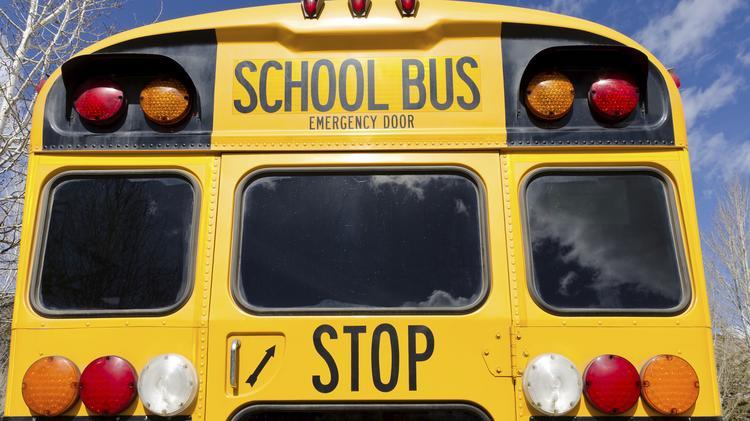 City School District Of Albany School Bus Company Durham School