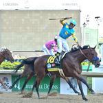 American Pharoah wins the Kentucky Derby (Video)