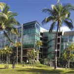 University of Hawaii launches official search for new UH Cancer Center director