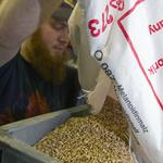Milwaukee malt industry veterans launch startup targeting craft brewers
