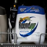 Herbicide used in Monsanto's Roundup unlikely to cause cancer: Report