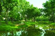 No. 5: Sienna Plantation Annual starts: 399 Market area: Southwest