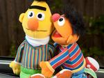 Expert: SeaWorld, Sesame Street partnership should meld characters with aquatic theme
