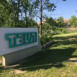 Teva stock up after major organizational changes announced