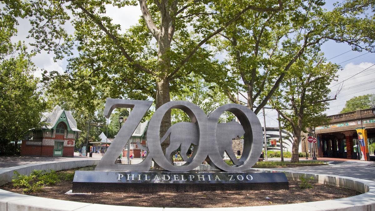 Philadelphia Zoo To Build New Multimillion Dollar