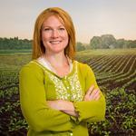 Monsanto cuts trans fats in new soybean