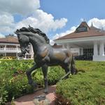 Saratoga Casino and Raceway announces name change