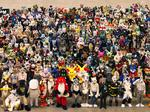 Fursuit of Happiness