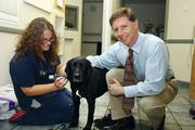 BluePearl Veterinary Partners' Lauren Harris shaving, Tater with Darryl Shaw, CEO at the Tampa practice.