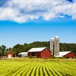 Farm workers should have right to unionize, Cuomo says