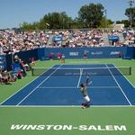 Winston-Salem Open announces 2016 field of players (PHOTOS)