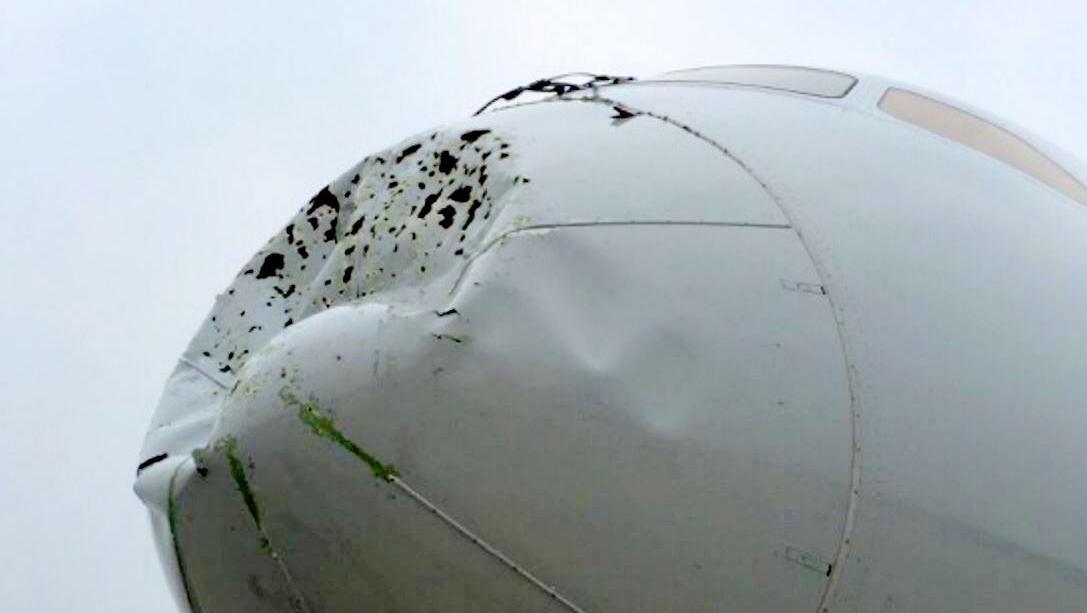http://media.bizj.us/view/img/6645482/aa-dreamliner-damage*1200xx1087-613-0-83.jpg