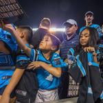 Hot off the shelf: Carolina Panthers gear hits the big time