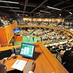Horse sales attract wide range of investors