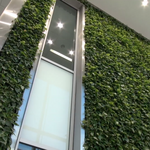 Forget 'green walls,' developers can save on energy on a smaller scale (Video)