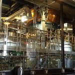 Inside the reopening Tivoli Brewing on Auraria campus (Slideshow)