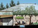 Cincinnati Zoo to build $12M expansion (Video)