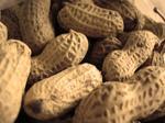 N.C. grower sues over 'Virginia Splits' peanut infestation