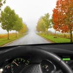 4 ways autumn driving is more dangerous for your employees
