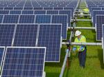 N.C. solar industry still shines bright, but outlook is cloudy