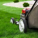 Uber-like service for lawn care? This is how it works
