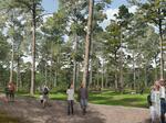 Details revealed for first phase of Memorial Park makeover