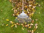 3 areas in your business that need a fall cleanup