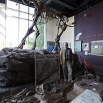 Kenosha Public Museum grows as national museums slow