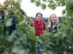Strategies: Willamette Valley Vineyards plots ambitious growth