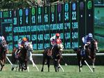 New York's leading thoroughbred owner buys property near Saratoga Race Course