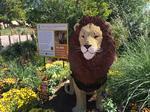 Denver Zoo poop-power project halted (Slideshow)