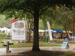 Festival in the Park brightens otherwise dreary Charlotte weekend (PHOTOS)