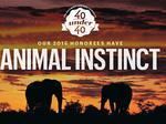 Here are the spirit animals of our 40 Under 40 class of 2015
