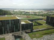 The building boasts 5 acres of green roofs, planted with sebum, and it does not block the magnificent view of the Potomac and Anacostia rivers.
