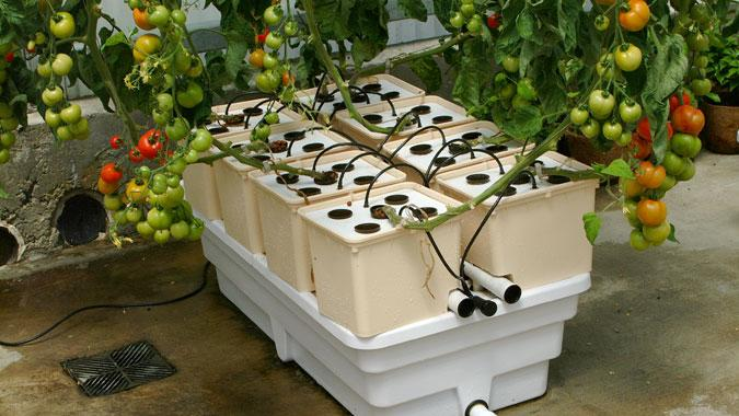General Hydroponics Scotts First Major Acquisition S Equipment To Grow Indoors Without