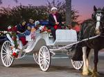 Horse-drawn carriage rides may soon be offered in downtown Birmingham