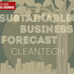 Sustainable business forecast: Cleantech