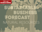 Sustainable business forecast: Natural Resources