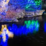 Saint Louis Zoo in running for best zoo lights - 5 things you don't need to know but might want to