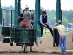 Board seeks to end state control of New York racing