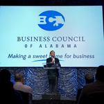 Business Council of Alabama elects new board members, officers