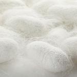 Mass. startup using silk in new treatment for osteoarthritis